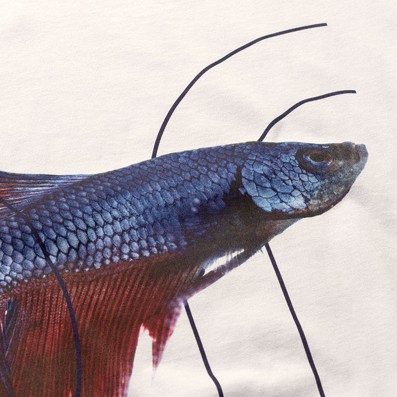 T-shirt_donna_cotone_bio_ Betta splendens