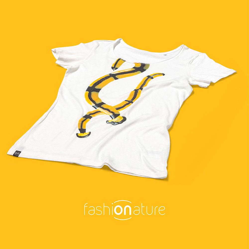 Women's Bipalium White T-Shirt donna sagomata, scollatura ampia. Collo in tessuto arrotolato. Stampa a colori ad alta definizione.100% cotone OEKO-TEX